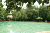 Jungle Tour Hot Spring en Emerald Pond Krabi, Thailand